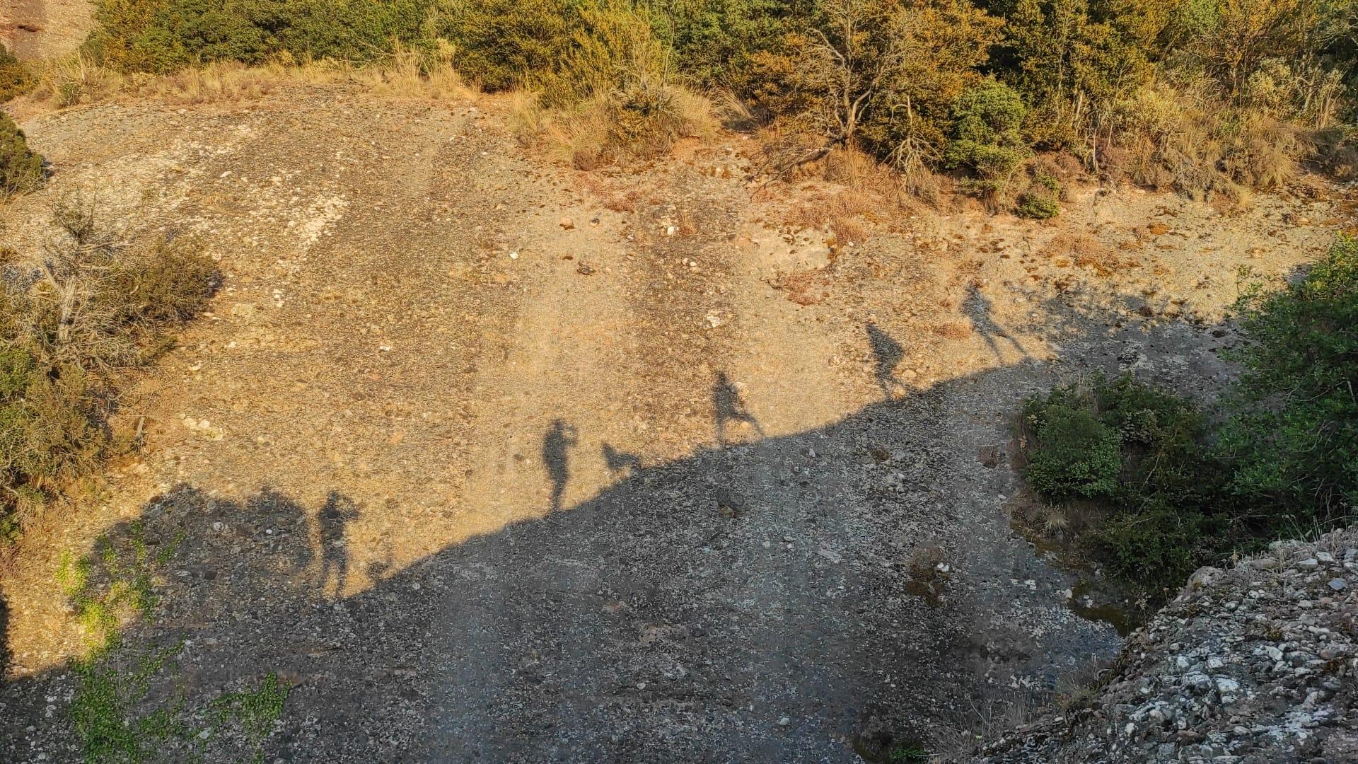 Beneficios de caminar por la montaña